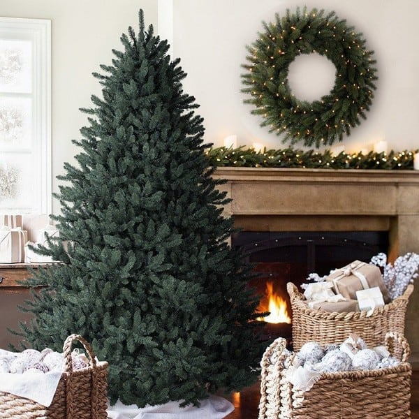 6.5 ft. Balsam Hill Blue Spruce Artificial Christmas Tree Unlit
