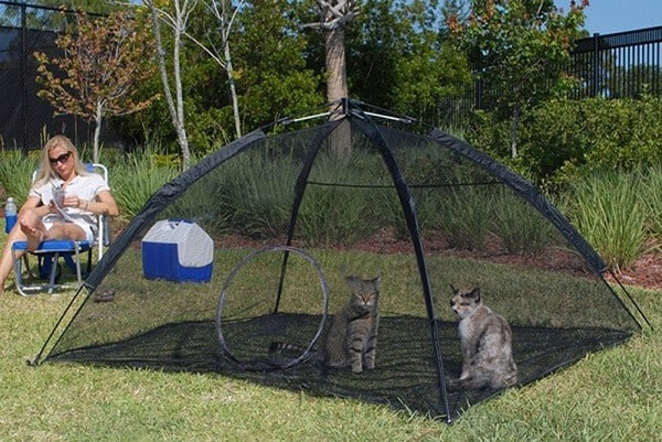 cat tent for indoor cats - Great for Balcony or Deck